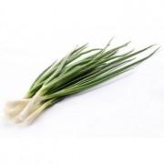 Семена лука на перо