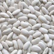 Фасоль овощная Белая