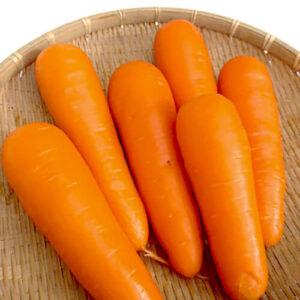 Морковь Талисман