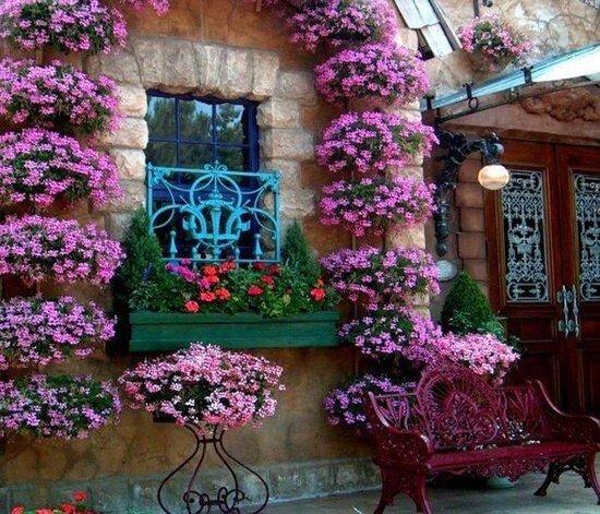 украшаем балкон петуниями