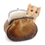 котенок в кошельке