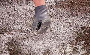 известкование почвы в борьбе с килой капусты