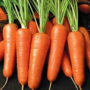 Морковь Обжорка