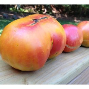 Томат Золотой ананас