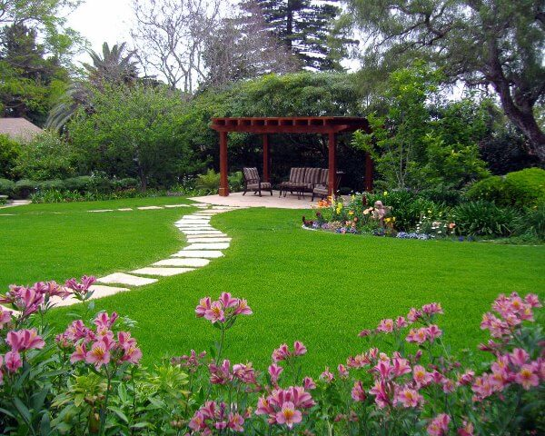 Как правильно посеять газон