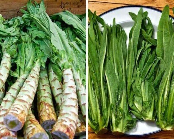 Спаржевый салат (уйсун)