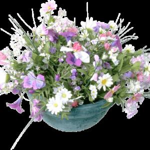 Семена Цветочных смесей