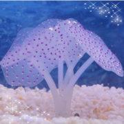 Кораллы для аквариума фиолетовый