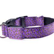 светящийся ошейник для собаки фиолетовый