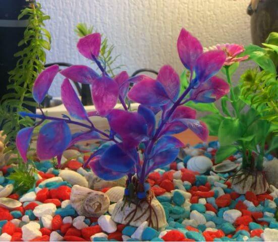 Искусственное растение для аквариума Людвигия