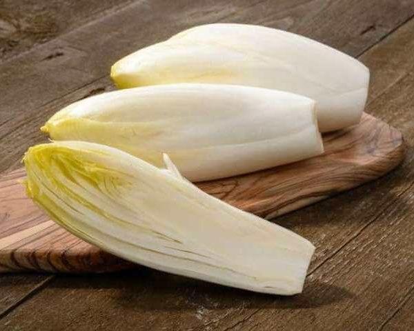 Салатный цикорий Белое золото