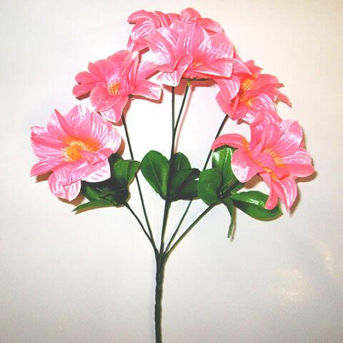 Георгина розовая