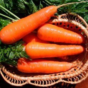 Морковь Бабетта