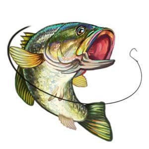 Лавка рыбака
