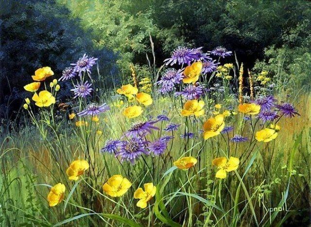 Выращивание самосевных цветов