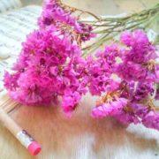 Кермек (Статице) Карминово-розовый