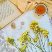 Кермек (Статице) желтый