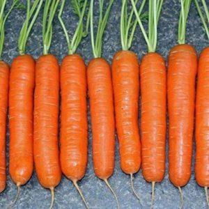 Морковь Детские конфетки Халле