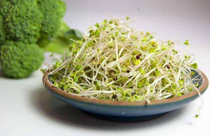 Как прорастить брокколи на микрозелень
