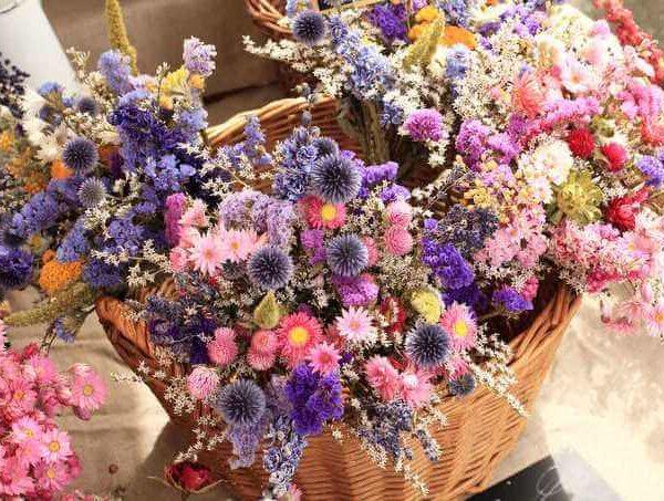 Цветочная смесь Зимний букет