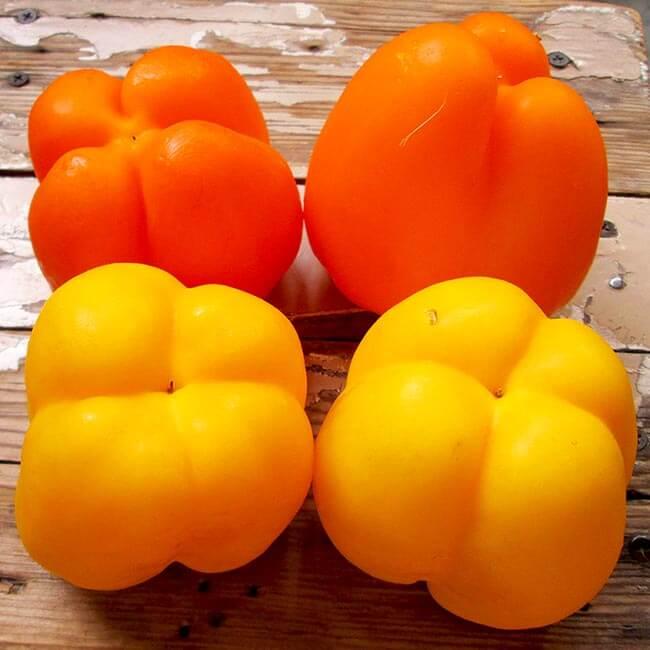 Перец Апельсиновая Турецкая долма